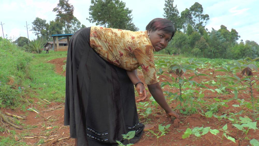 Témoignage d'une jeune entrepreneur agricole de Cirunga.